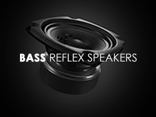 CTX5000 Bass Reflex Speakers